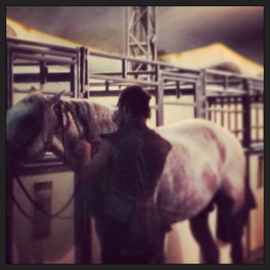 Trainers and performers braid the horses' mane after a post-performance shower...for the horse.