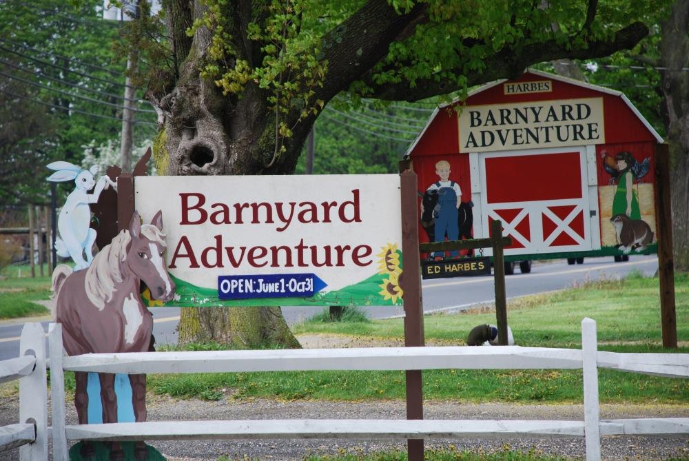 Barnyard Adventure at Harbes Family Farm